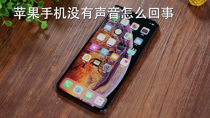 苹果手机打电话声音小怎么回事