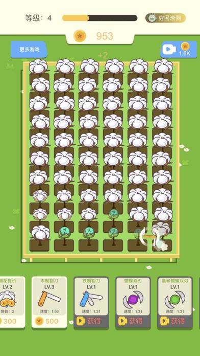 我爱摘棉花