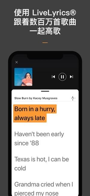 音乐搜索器app