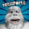打企鹅(Yetisports)