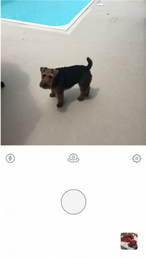 prisma app下载
