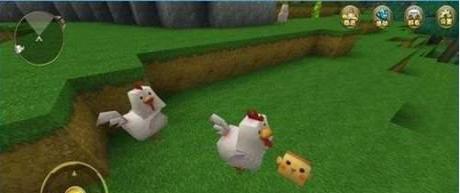 迷你世界怎么引鸡 迷你世界引鸡方法详解