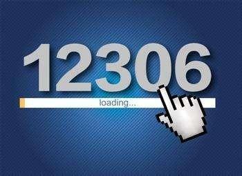 12306